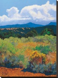 Distant Hills Stretched Canvas Print by Mary Silverwood