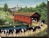 Cows in West Arlington Stretched Canvas Print by Lowell Herrero