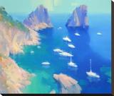 Capri II Stretched Canvas Print by Alex Hook Krioutchkov
