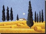 Cypress and Hay Stretched Canvas Print by Lowell Herrero