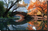 Gapstow Bridge, Fall Stretched Canvas Print by Michael Chen