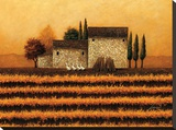 Fall Vineyard Stretched Canvas Print by Lowell Herrero
