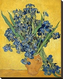 Irises, 1890 Stretched Canvas Print by Vincent van Gogh