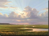 Low Country Splendor Stretched Canvas Print by Henry E. Von Genk