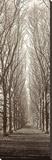 Hampton Gates Promenade Stretched Canvas Print by Alan Blaustein