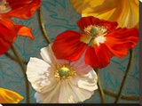 Poppycock Stretched Canvas Print by Jan McLaughlin