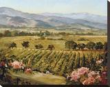 Vineyards to Vaca Mountains Stretched Canvas Print by Ellie Freudenstein