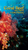 Coral Reef - 2017 Two-Year Planner Calendars