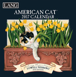 American Cat - 2017 Boxed Calendar Calendars