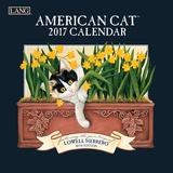 American Cat - 2017 Mini Calendar Calendars