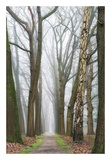 At the End You Will Find a New Beginning Posters by Lars Van de Goor