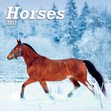 Horses - 2017 Mini Calendar Calendars