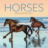 Horses - 2017 Boxed Calendar Calendars