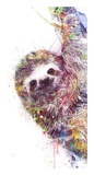 Sloth Reprodukcje autor VeeBee