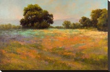 Spring Meadow Stretched Canvas Print by Alice Weil