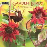 Garden Birds - 2017 Calendar Calendars