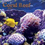 Coral Reef - 2017 Mini Calendar Calendars