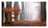 Last Guide Before The Mist Poster by Lars Van de Goor