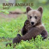 Baby Animals - 2017 Calendar Calendars