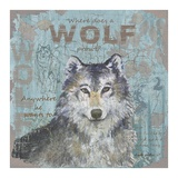 Where Does a Wolf Prowl Prints by Anita Phillips