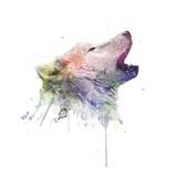 Wolf Prints by  VeeBee