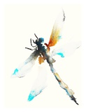 Blue & Brown Dragonfly Art by Karin Johannesson