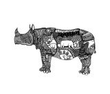 Goodbye Rhino Posters by Liz Ash