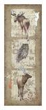 Woodlands IV Posters af Anita Phillips