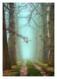 Blue Mist Print by Lars Van de Goor