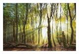 Still Standing Prints by Lars Van de Goor