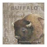 Where Does a Buffalo Roam Art by Anita Phillips