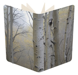 Aspen Trees, Dixie National Forest Boulder Mountain, Utah, USA Notebook by Charles Gurche