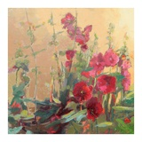 Red Haven Hollyhocks Posters by Beth A. Forst