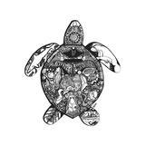Goodbye Sea Turtle Poster von Liz Ash