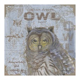 Where Does an Owl Hoot Poster van Anita Phillips