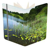 Loughrigg Tarn, Lake District National Park, Cumbria, England, United Kingdom, Europe Notebook by Jeremy Lightfoot