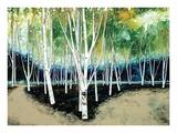 White Trees Kunstdrucke von Stuart Roy