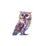 Owl Print by  VeeBee