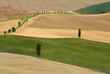 Tuscany Land Photographic Print by Marco Carmassi