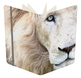 Full Frame Close Up Portrait of a Male White Lion with Blue Eyes.  South Africa. Notebook by Karine Aigner