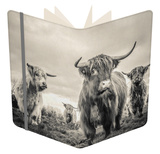 Highland Cattle Notebook by Mark Gemmell