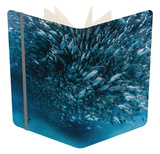 A School of Fish over a Diver, Baja California. Notebook by Christian Vizl