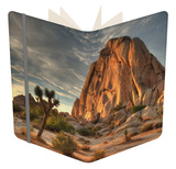 Sunset at Joshua Tree National Park in Southern California Notebook by Kyle Hammons