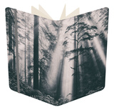 Divine Light Beams and Redwoods, Northern California Coast Notebook by Vincent James