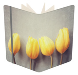 Four Yellow Tulips Against a Textured Grey Blue Background Notebook by Susannah Tucker