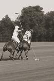 Polo In The Park II Giclée-Druck von Ben Wood
