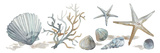 Sea Treasures Giclee Print by Sandra Jacobs