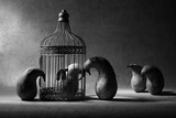 The Political Prisoner Reproduction photographique par Victoria Ivanova