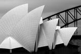 Opera House Sydney Photographic Print by Alida Van Zaane
