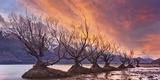 Glenorchy on Fire Photographic Print by Yan Zhang